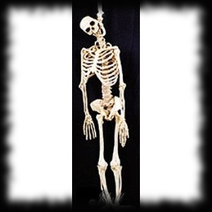 Hanging Skeleton Halloween Haunted House Prop
