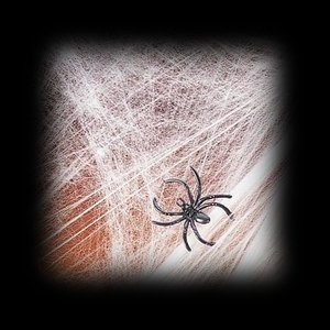 Haunted House Spider Web For Sale
