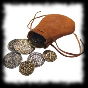 Pirate Halloween Costume Accessory Idea Pirate Coin and Pouch