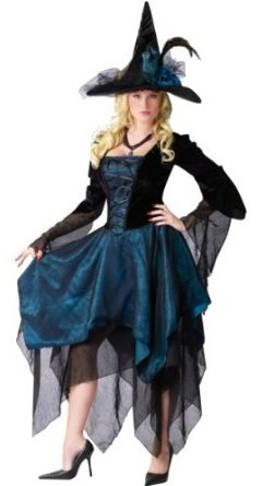 Victorian Witch Halloween Costume For Sale