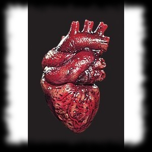 Halloween Party Ideas Human Zombie Heart Decoration Prop